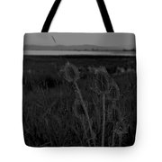 Thistles At Ninepipes Tote Bag