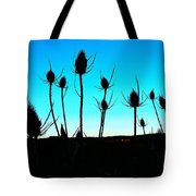 Thistles At Sunset Tote Bag