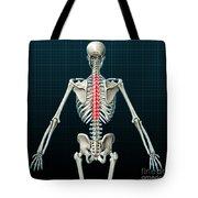 Thoracic Vertebrae, Illustration Tote Bag