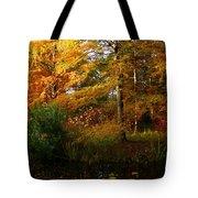 Thoreau's Splendour Tote Bag