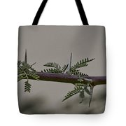 Thorns Of The Acacia Tree Tote Bag