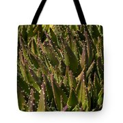 Thorns On Succulent Tote Bag