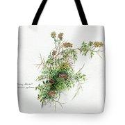 Thorny Burnet C1950 Tote Bag