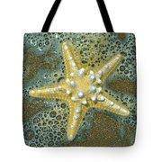 Thorny Starfish Tote Bag