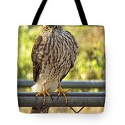 Those Claws  That Stare Tote Bag