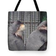 Thoughtful Monkeys Tote Bag