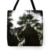 Thousand Palms Canyon Tote Bag