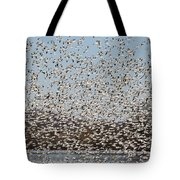 Thousands Of Snow Geese Tote Bag