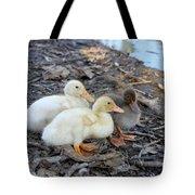 Three Baby Ducks Tote Bag