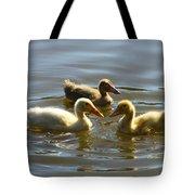 Three Baby Ducks Swimming Tote Bag