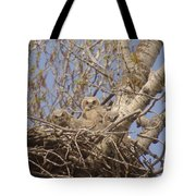 Three Baby Owls  Tote Bag
