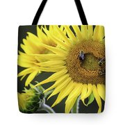 Three Bees On A Sunflower Tote Bag