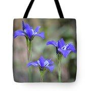 Three Blue Iris Tote Bag