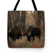 Three Bull Moose Sparring Tote Bag