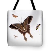 Three Butterflies And A Gnat Tote Bag