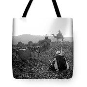Three Camels Tote Bag