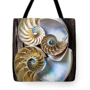Three Chambered Nautilus Tote Bag by Garry Gay