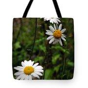 Three Daisies Tote Bag