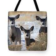 Three Deer Tote Bag