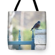 Three Different Tote Bag