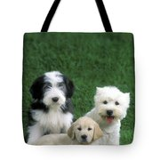 Three Diffferent Puppies Tote Bag