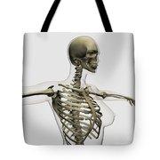 Three Dimensional View Of Female Rib Tote Bag by Stocktrek Images