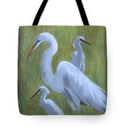 Three Egrets  Tote Bag