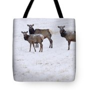 Three Elk Cows And Calf Tote Bag