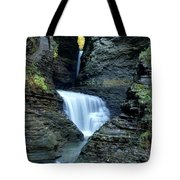 Three Falls In Watkins Glen Tote Bag
