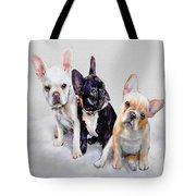 Three Frenchie Puppies Tote Bag by Jane Schnetlage