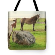 There Were Three Horsegirls And One Big Gray Stone  Tote Bag