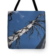 Three Gray Trees Tote Bag