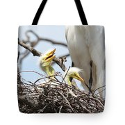Three Great Egret Chicks In Nest Tote Bag by Carol Groenen