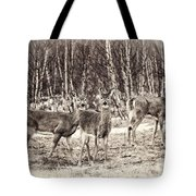 Three In The Field Tote Bag