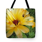 Three Insects And A Flower Tote Bag