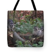 Three Is A Crowd Tote Bag by Kym Backland