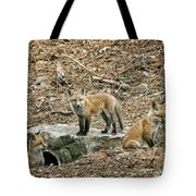 Three Kits Tote Bag