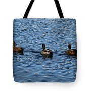 Three Mallard Ducks Tote Bag