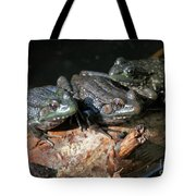 Three Musketeers Tote Bag