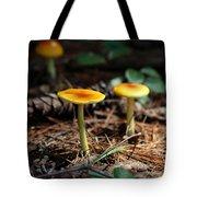 Three Orange Mushrooms Tote Bag