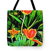 Three Orange Parrots  Tote Bag