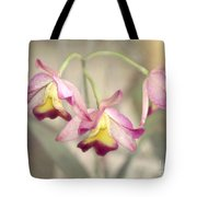 Three Orchid Beauties Tote Bag