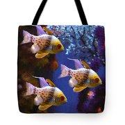 Three Pajama Cardinal Fish Tote Bag