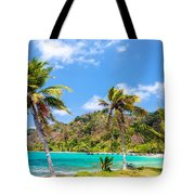 Three Palm Trees In Panama Tote Bag