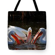 Three Pelicans And A Fish Tote Bag
