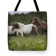 Three Ponies Tote Bag