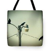 Three Raven Hoedown Tote Bag