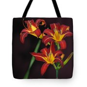 Three Red Daylilies Tote Bag