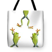 Three Red Eyed Tree Frogs Climbing Tote Bag