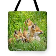 Three Red Fox Pups Tote Bag
